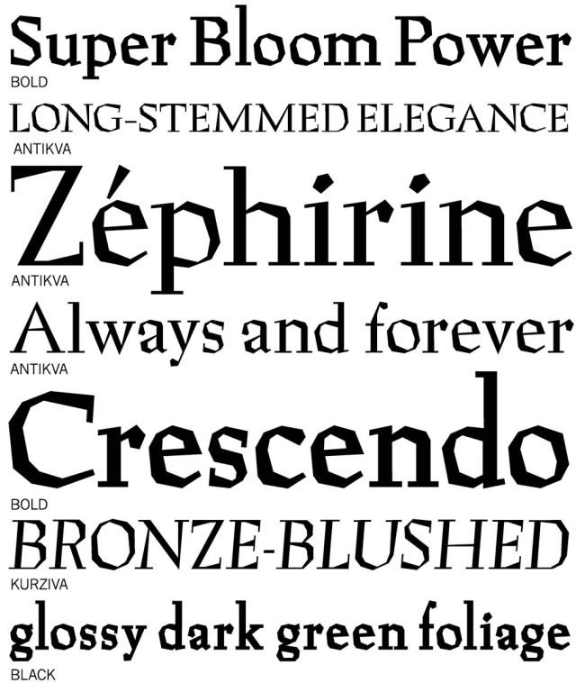 Preissig Antikva typeface sampler